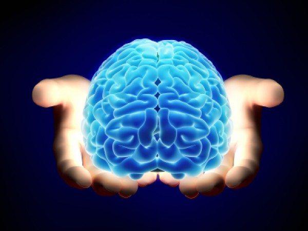 Reactive Brain