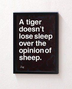 TIger Doesn't Sleep