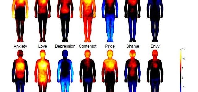 Where Are Emotions and Thoughts Felt In The Body?