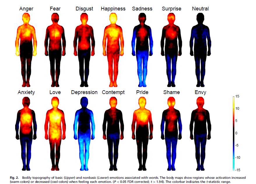 Body Energy Zones