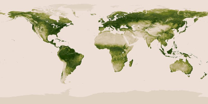 World Showing Vegetation