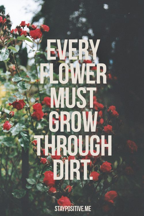 Flower Quote Picture