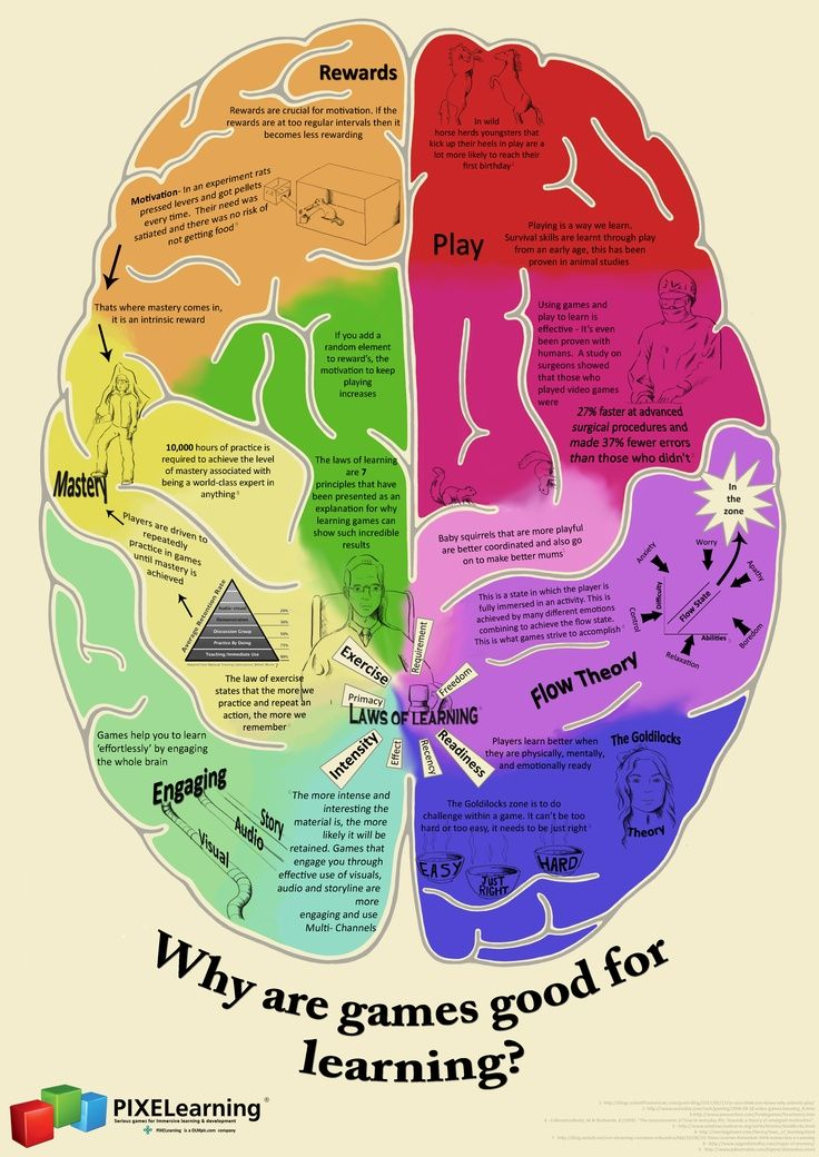Brain Learning Infographic