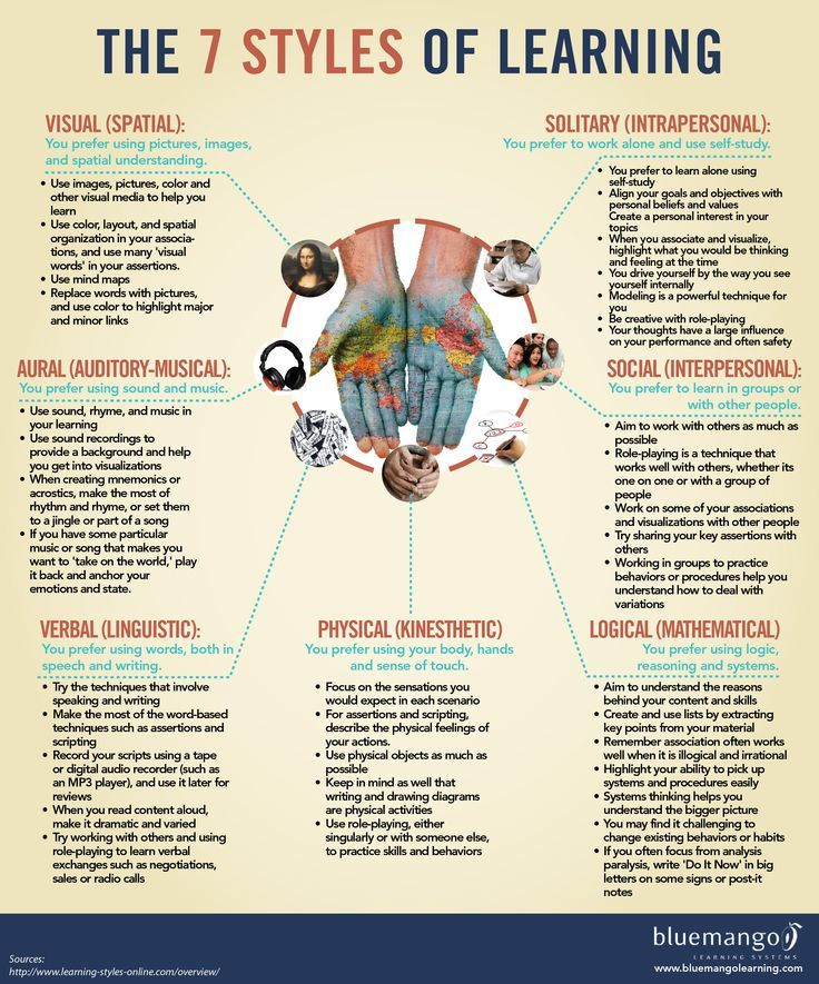 Learning Styles Infographic