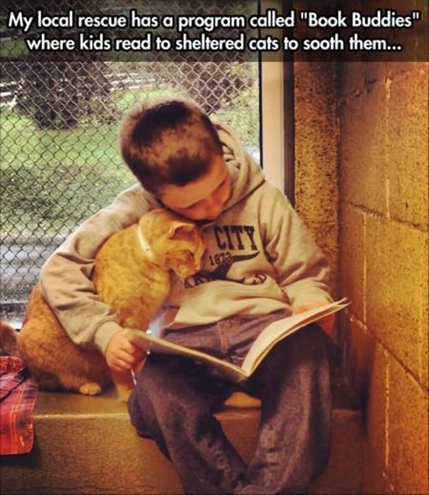 Humane Society Love