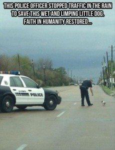 Cop Saved Animal