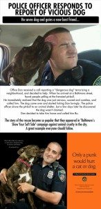 Save a dog and earn a friend