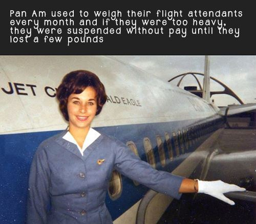 Flight Attendant Facts