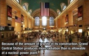 Grand Central Fact