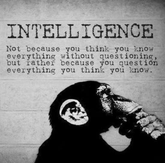 Intelligence in life
