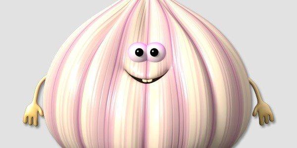 Ever Wonder How Garlic is Grown?