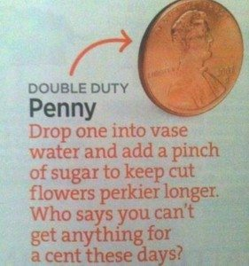 the value of a penny