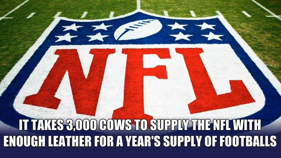 nfl facts
