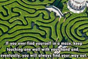 maze tips fact