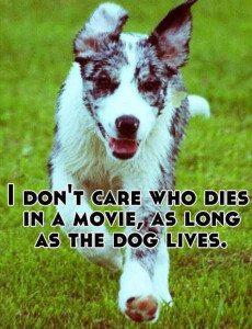 dog stays alive