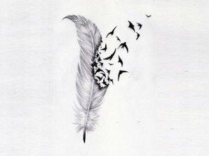 feather comes alive