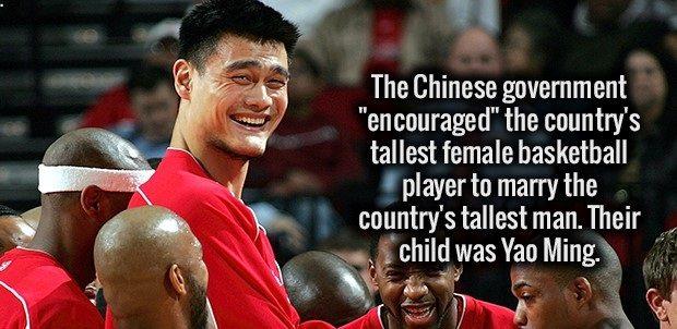 basketball genes