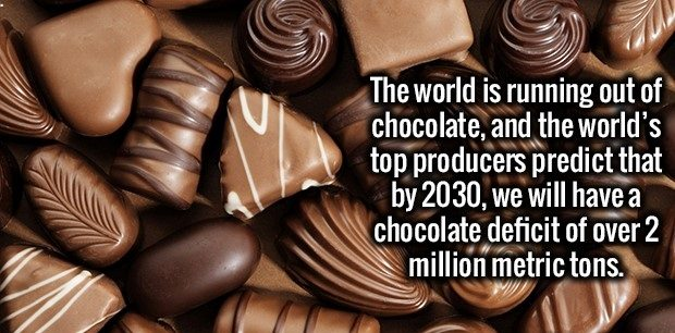 the end of chocolate