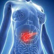 It's Time To Learn About Your Pancreas [VIDEO]