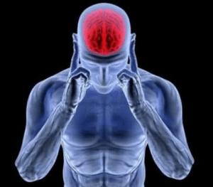 millionaire brain