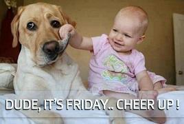 Funny GIF Friday – 21