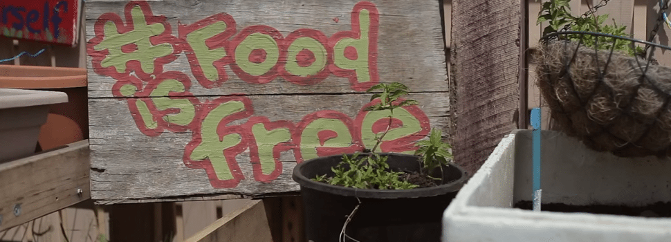 This Small Town In Australia Is Starting The #FoodIsFree Movement