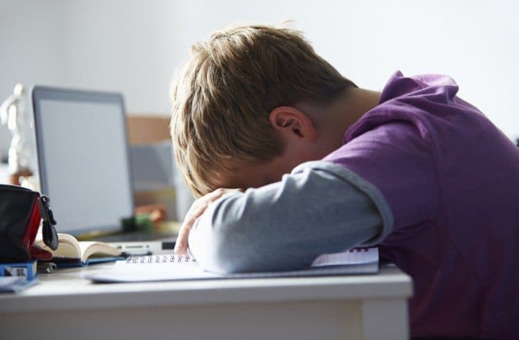 Feeling Completely Overwhelmed With School? – That's Okay, We Can Help!