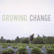 The Jim Cochran Strawberry Story [VIDEO]